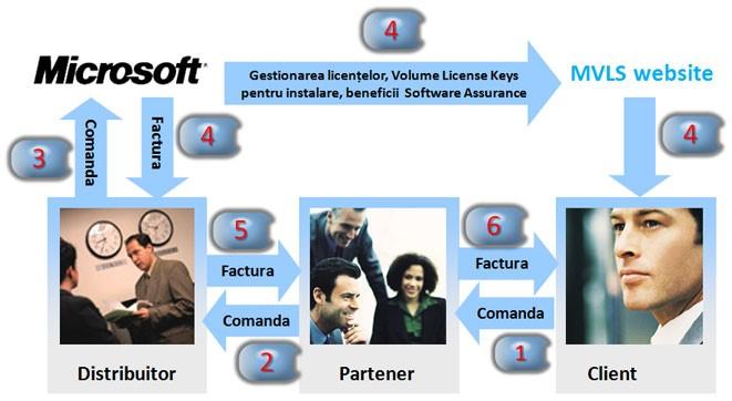 Consultanta in licentiere Microsoft